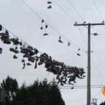 Кабели слабых токов: слаботочная сеть квартиры и дома