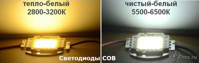 фото светодиоды COB